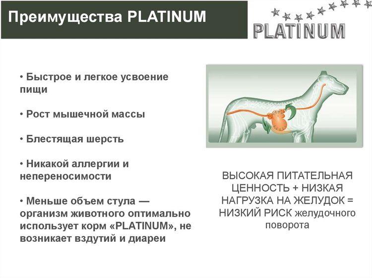 Усваяемость корма Platinum