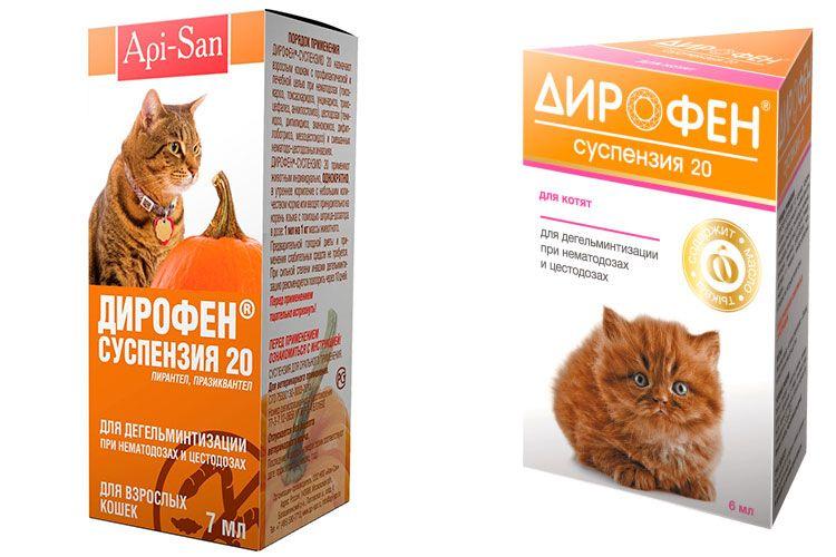 Суспензия Дирофен для кошек