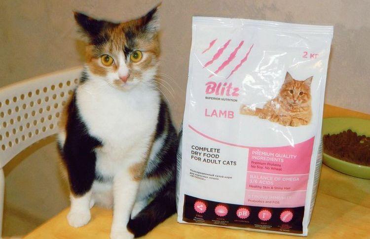 Корм Блитц для котов