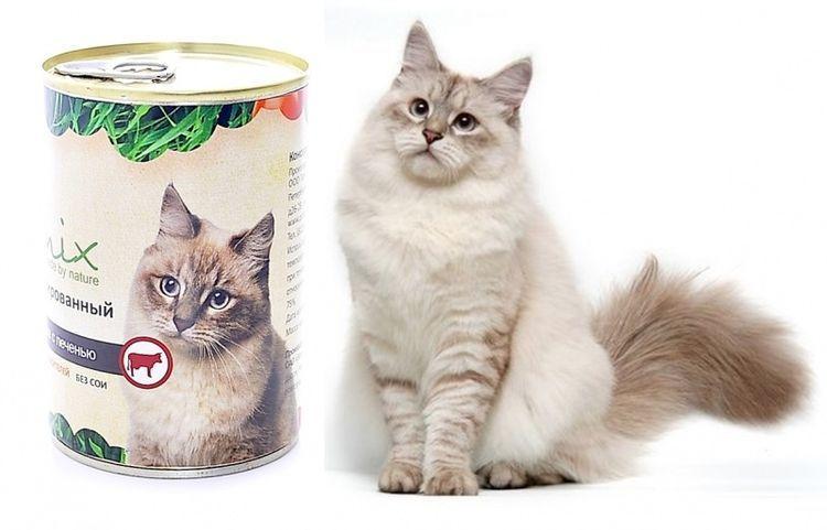 Корма для кошек Органикс