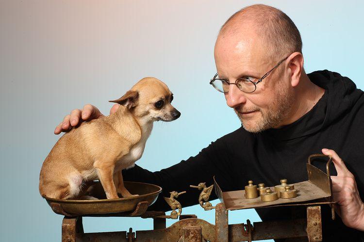 Как взвесить собаку