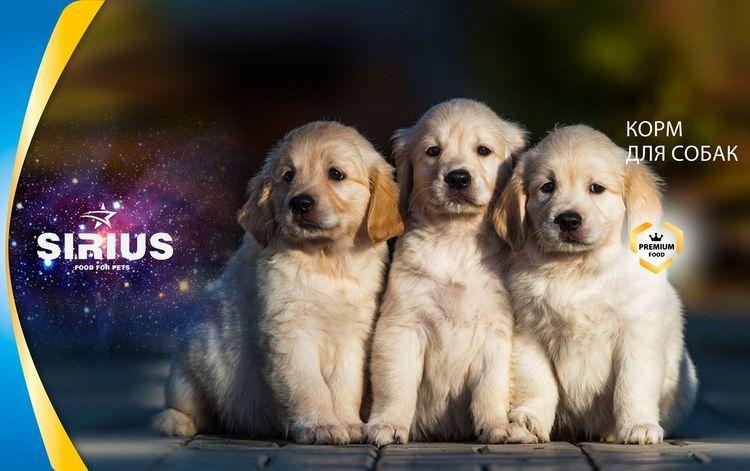 Корм для собак Сириус