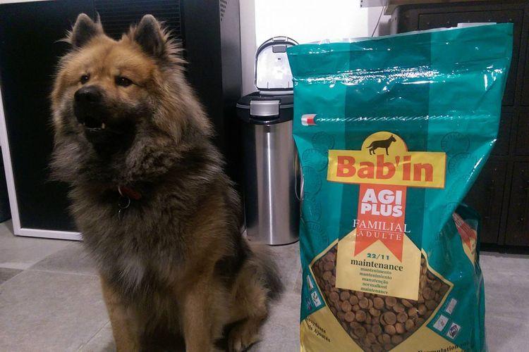 Бабин (Babin) - корм для собак
