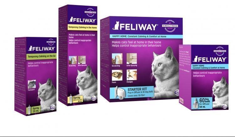 Феливей для котов