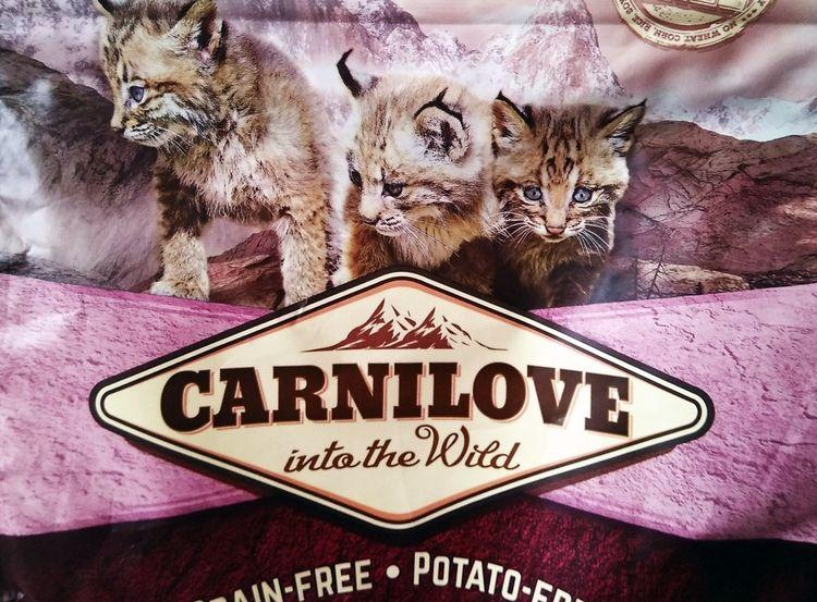 Carnilove – корм для кошек