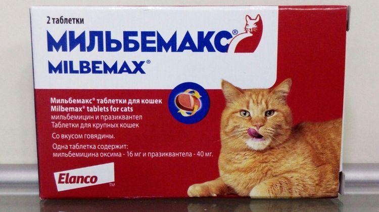 Мильбемакс для котов