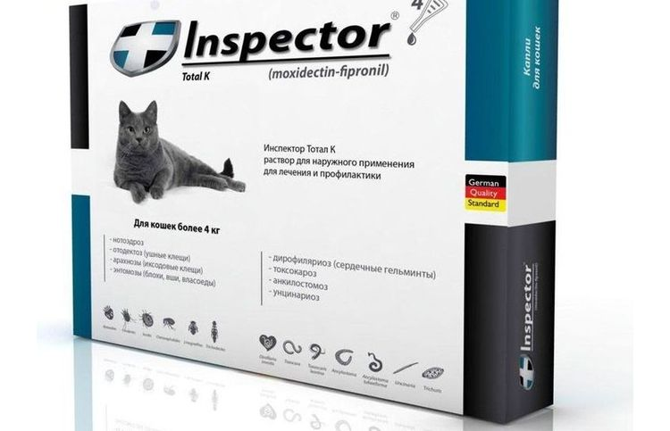 Инспектор для кошек