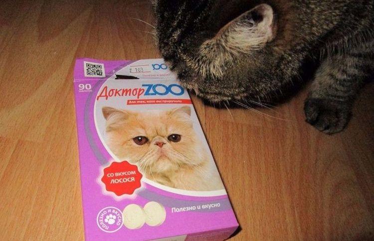 Кот ест витамины Доктор Зоо