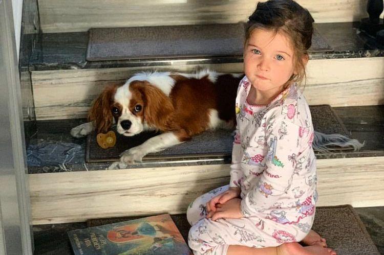 Дочь Ксении Бородиной и собака Берти