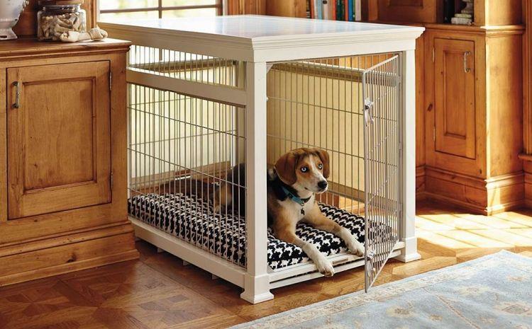 Собака в домашнем вольере