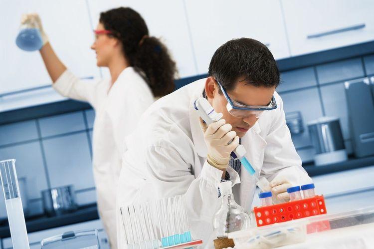 Лаборанты в лаборатории