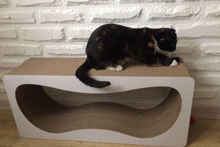 Кот точит когти о картонную когтеточку