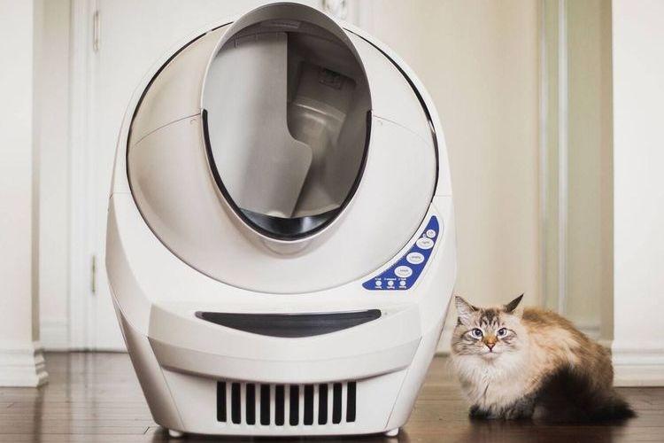 Туалет для кошек самоочищающийся