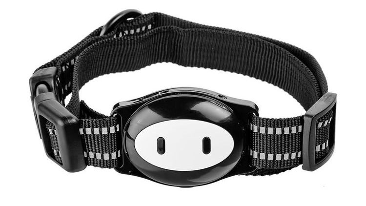 Ошейник с GPS для кошек MonkeyG Dest D79